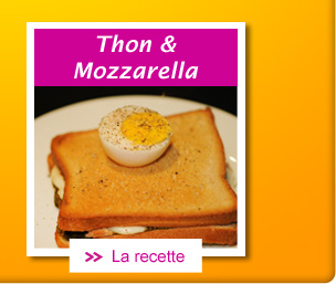 Croque au thon et mozzarella