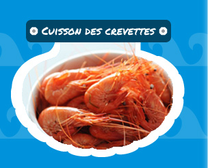 cuisson des crevettes roses (bouquets)