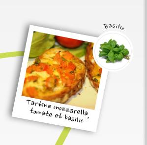 Tartines mozzarella tomate basilic
